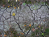 Photo 300 DPI: cracked ground