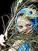 ID 3054216 | 스카프와 깃털을 가진 아름 다운 여자 | 높은 해상도 사진 | CLIPARTO
