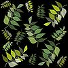 Vector clipart: background of leaves