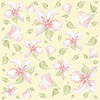Hintergrund von Hibiskus-Blumen
