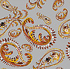 Vector clipart: background of paisley ornament
