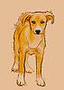 Векторный клипарт: бездомная собака