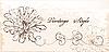 Vintage invitation with flowers