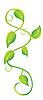 Vector clipart: ivy