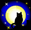 full moon and black cat