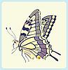 Eastern Tiger Schwalbenschwanz Schmetterling