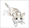 Kitten | Stock Vector Graphics