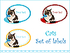 Set of labels with cat | Stock Vector Graphics