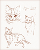Vector clipart: sketches of cat