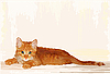 лежащий рыжий котенок