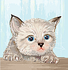 Vector clipart: fluffy kitten with blue eyes