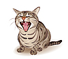 Vector clipart: tabby cat