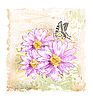 Vector clipart: pink flowers and butterfly