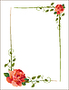 Vector clipart: frame with roses