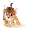 Vector clipart: ginger tabby kitten