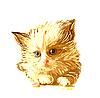 портрет рыжего котенка с голубыми глазами
