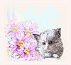 поздравительную открытку с небольшой пушистый котенок и гербер