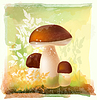 Vector clipart: group of ceps in forest. Watercolor style