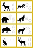 Vector clipart: Footmarks of animal tracks