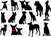 Vector clipart: set of dog silhouettes