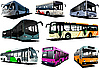 Eight city buses