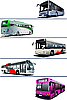 Vector clipart: city buses