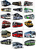Vector clipart: buses