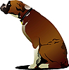 Vector clipart: Sitting cute boxer dog.