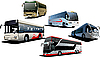 Vector clipart: Five city buses
