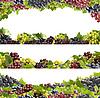 Weintrauben | Stock Foto