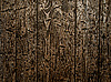 ID 3049162 | Wooden texture | High resolution stock photo | CLIPARTO
