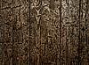 ID 3049162 | Drewniane tekstury | Foto stockowe wysokiej rozdzielczości | KLIPARTO
