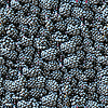Blackberry seamless background | Stock Foto