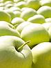 ID 3059333 | Zielone jabłka | Foto stockowe wysokiej rozdzielczości | KLIPARTO