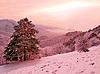 Paisaje nevado | Foto de stock