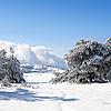Wintry landscape | Stock Foto