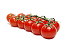 Branch of red tomatoes | Stock Foto