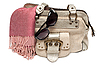 Lady hand-bag z rose szalik | Stock Foto