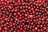 Photo 300 DPI: Cranberries background