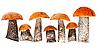 Champiñones frescos forestales | Foto de stock