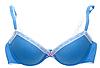 Blue sujetador de encaje femenino | Foto de stock