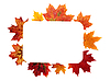 Photo 300 DPI: Autumn frame of leaves