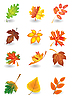 Vector clipart: leaves