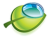 Vector clipart: Clean drop on green leaf
