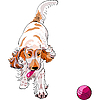 Dog cocker spaniel plays with red ball | Stock Vector Graphics