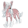 Dog Chinese Crested breed | Stock Vector Graphics