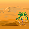desert landscape with the palm trees