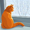 Vector clipart: red cat dreams in winter
