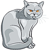 Vector clipart: gray cat sits and looks seriously