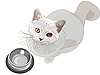 Vector clipart: cat requests to eat